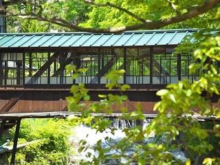 元禄の湯のある「前新」と「向新」をつなぐ廊下橋は国の登録文化財。