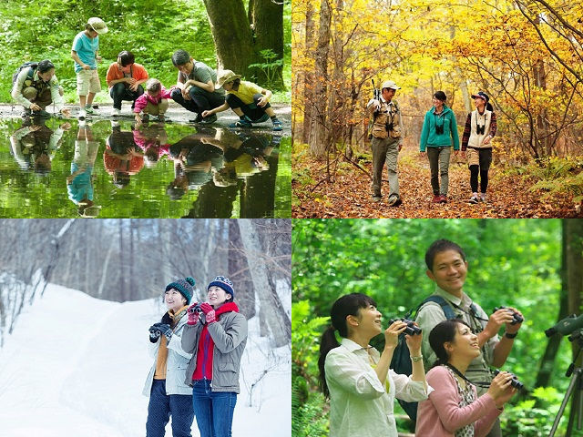 軽井沢の自然をながく見守っていた、『森のいきもの案内人ピッキオ』のネイチャーガイドが楽しく森を案内♪