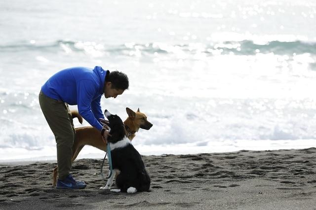 【朝食付きプラン】1日5室限定!朝から愛犬と浜辺をお散歩!21時までチェックインOK!