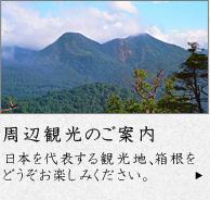 周辺観光のご案内 日本を代表する観光地、箱根をどうぞお楽しみください。