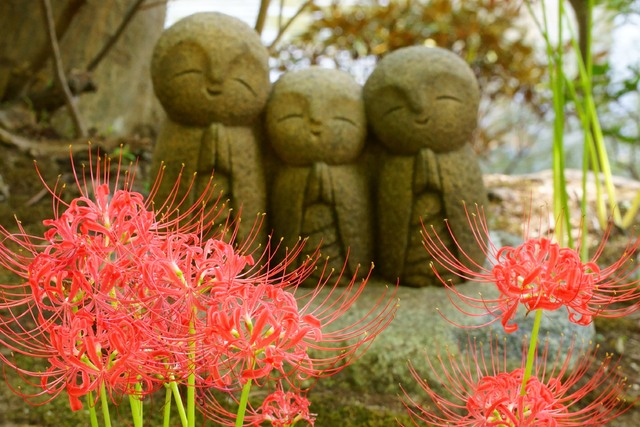 【組合員】直前予約★9月特価★お得な!!秋の鎌倉◎スタンダード会席プラン