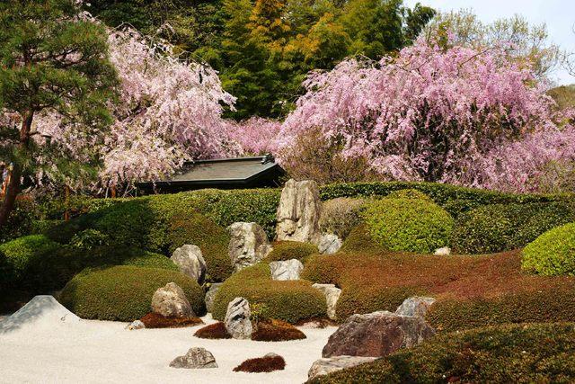【組合員】◆直前割で3~4月がお得!★お得な春の鎌倉◎メイン料理が選べる!「グルメ会席」プラン