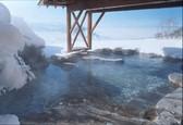 絶景!天然温泉露天風呂を堪能♪緑と空を感じる宿(スタンダードプラン)