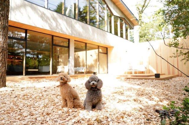 【朝食付きでお気軽Stay】愛犬と過ごす深いくつろぎと贅沢な時間/21時までチェックインOK!