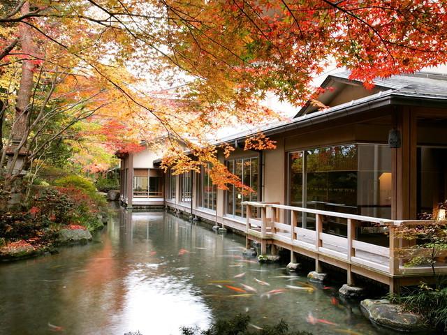 【庭園】色づく秋の景色をお楽しみいただけます