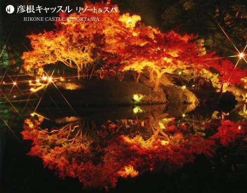 錦秋のライトアップ