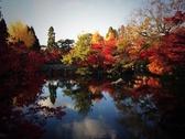 京都の永観堂は紅葉の名所です♪