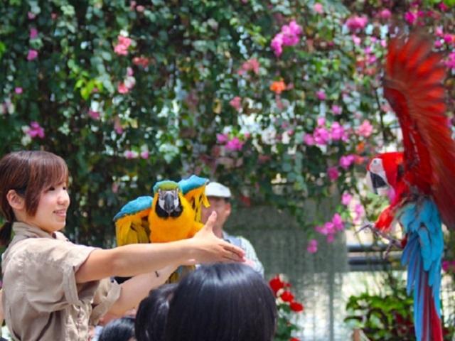 <GoToトラベルキャンペーン割引対象>【【神戸空港ご利用に便利!】レイトチェックインプラン~2食付~