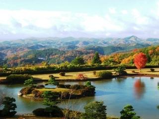広島県の木「もみじ」がホテル『東林苑』を真っ赤に染めあげます。 池にひらひらと舞い落ちるもみじの葉。