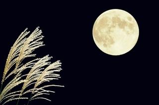 中秋の名月※イメージ