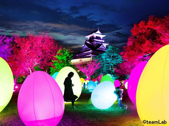 【チームラボ 高知城 光の祭】光のアート空間を体験!