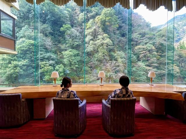 【ロビー】大きな窓から原生林を眺める贅沢な時間