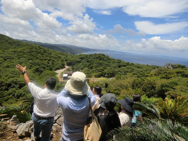 大自然のパワーを体感できる観光スポット